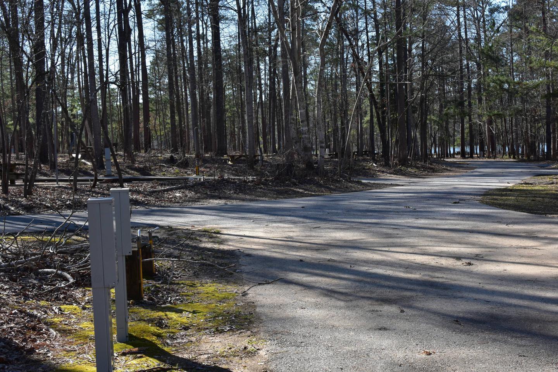 Fox Loop Site 4-3Fox Loop Site 4, March 6, 2020