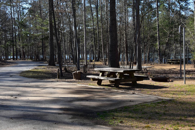 Fox Loop Site 4-4Fox Loop Site 4, March 6, 2020