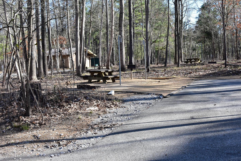 Fox Loop Site 6Fox Loop Site 6, March 6, 2020