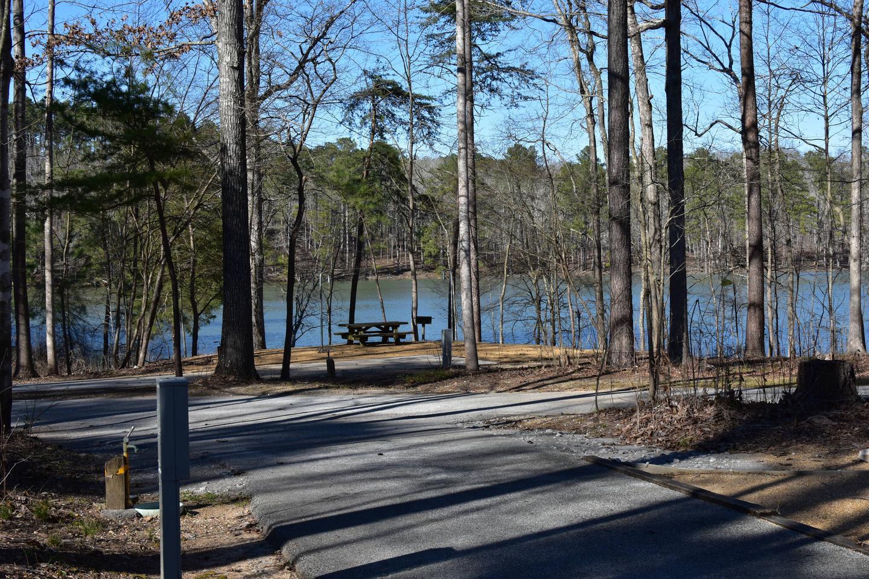 Fox Loop Site 6-2Fox Loop Site 6, March 6, 2020