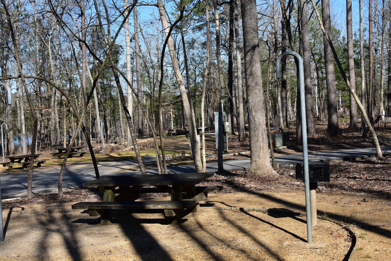 Fox Loop Site 6-4Fox Loop Site 6, March 6, 2020