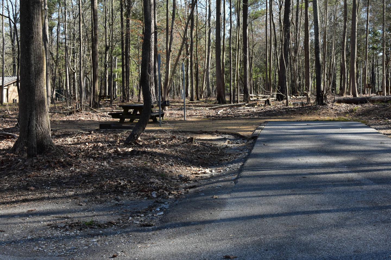 Fox Loop Site 7Fox Loop Site 7, March 6, 2020