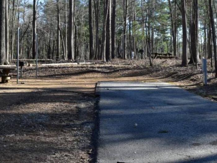 Fox Loop Site 9Fox Loop Site 9, March 6, 2020