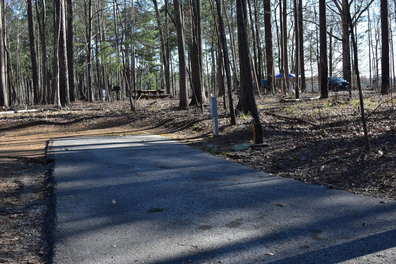 Fox Loop Site 9-2Fox Loop Site 9, March 6, 2020