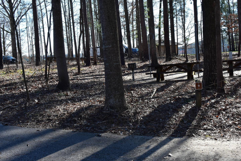 Fox Loop Site 9-3Fox Loop Site 9, March 6, 2020