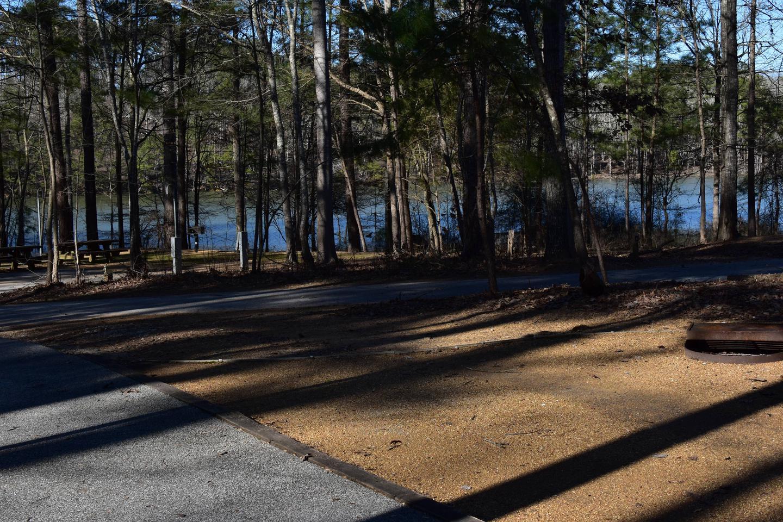 Fox Loop Site 9-5Fox Loop Site 9, March 6, 2020