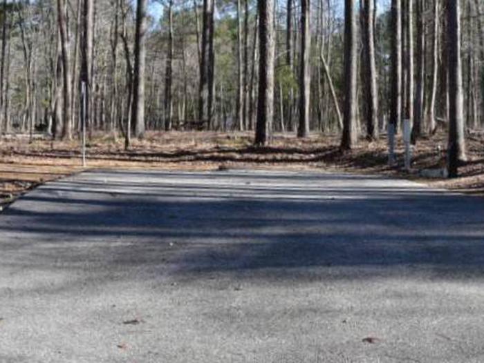 Fox Loop Site 11Fox Loop Site 11, March 6, 2020