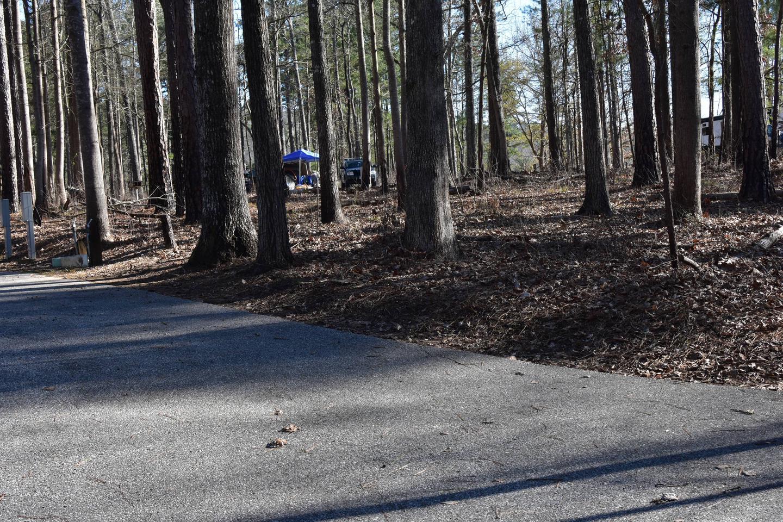 Fox Loop Site 11-2Fox Loop Site 11, March 6, 2020