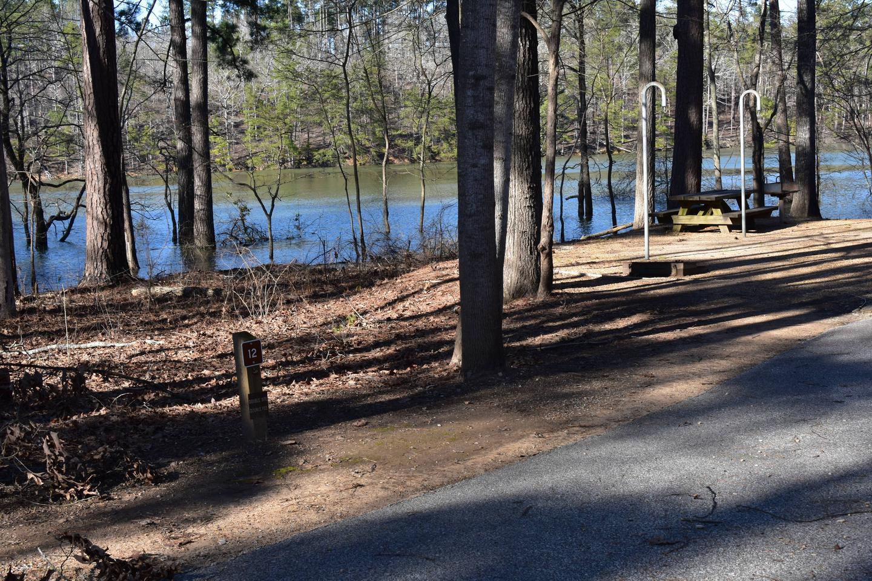 Fox Loop Site 12Fox Loop Site 12, March 6, 2020