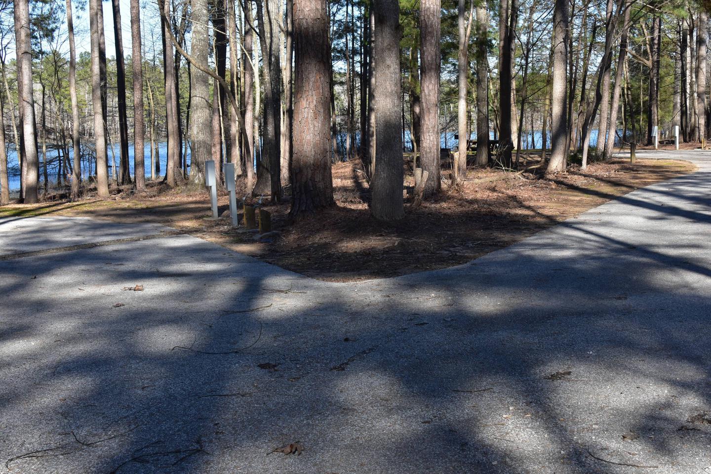 Fox Loop Site 12-2Fox Loop Site 12, March 6, 2020