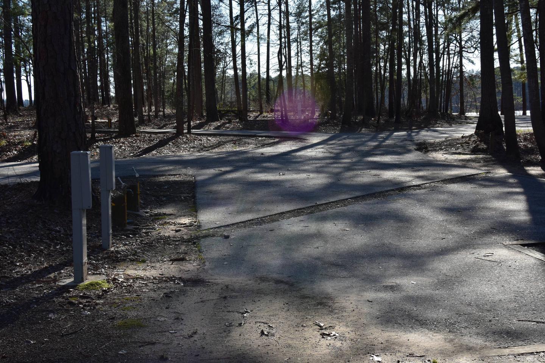 Fox Loop Site 12-3Fox Loop Site 12, March 6, 2020