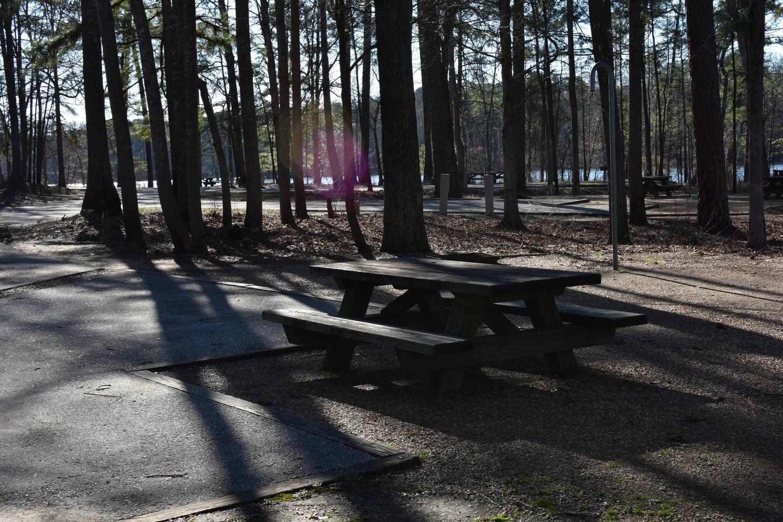 Fox Loop Site 12-4Fox Loop Site 12, March 6, 2020