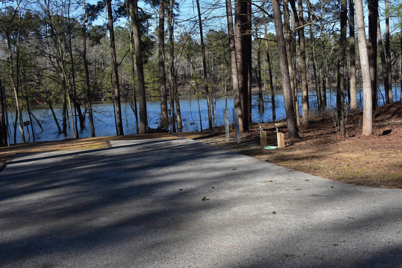 Fox Loop Site 14-1Fox Loop Site 14, March 6, 2020