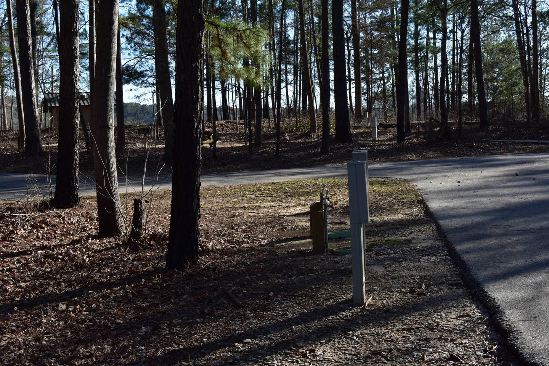 Fox Loop Site 14-3Fox Loop Site 14, March 6, 2020
