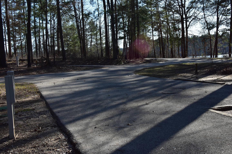 Fox Loop Site 14-4Fox Loop Site 14, March 6, 2020