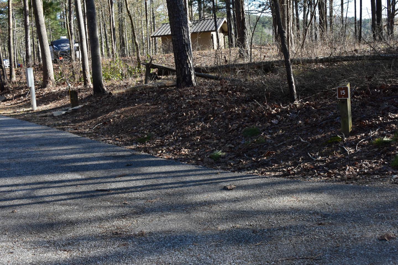 Fox Loop Site 15-2Fox Loop Site 15, March 6, 2020