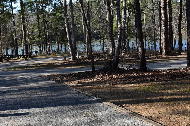 Fox Loop Site 15-4Fox Loop Site 15, March 6, 2020