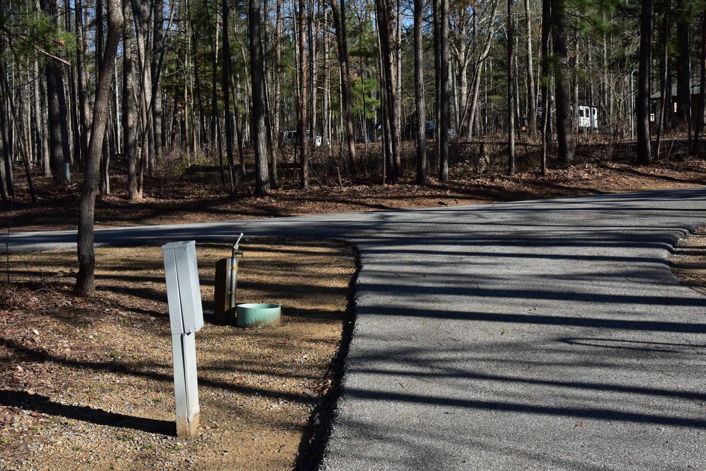 Fox Loop Site 17-3Fox Loop Site 17, March 6, 2020