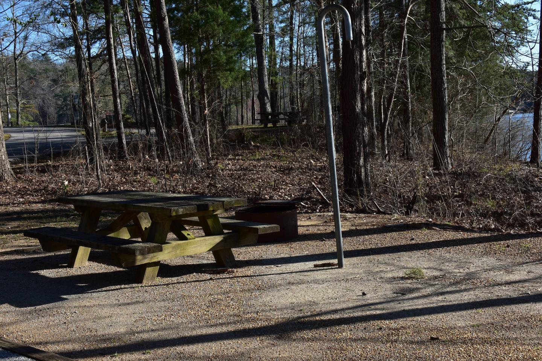 Fox Loop Site 17-5Fox Loop Site 17, March 6, 2020