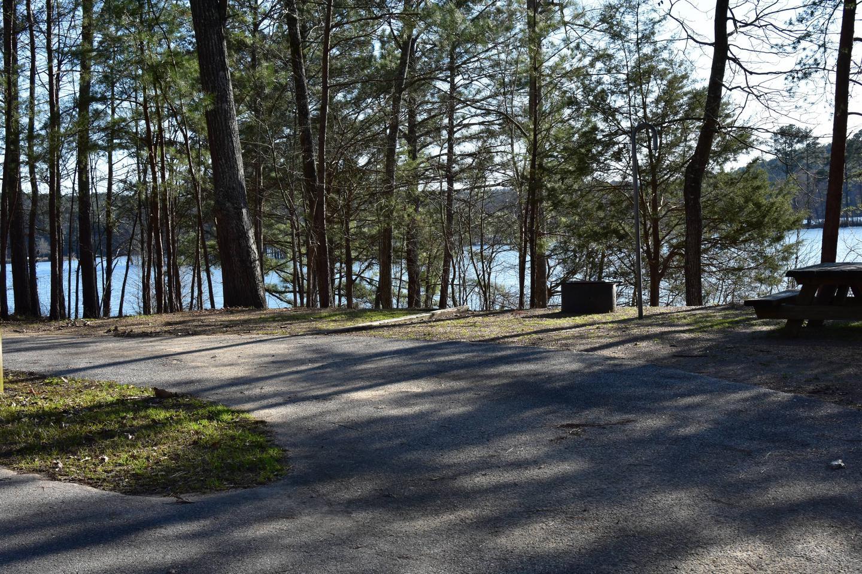 Fox Loop Site 18-1Fox Loop Site 18, March 6, 2020