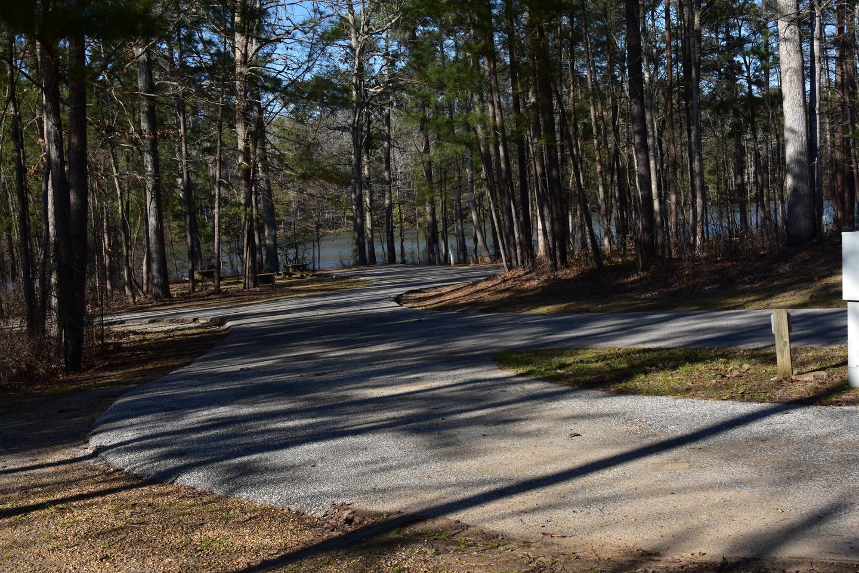 Fox Loop Site 18-3Fox Loop Site 18, March 6, 2020