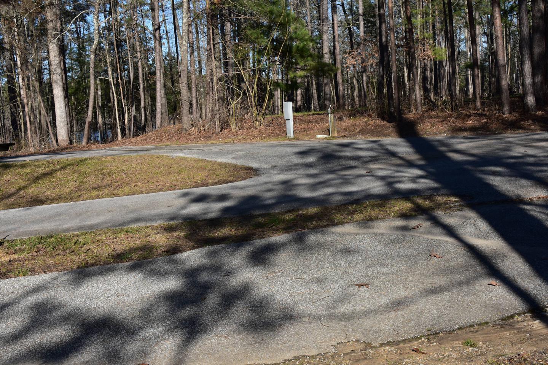 Fox Loop Site 18-5Fox Loop Site 18, March 6, 2020