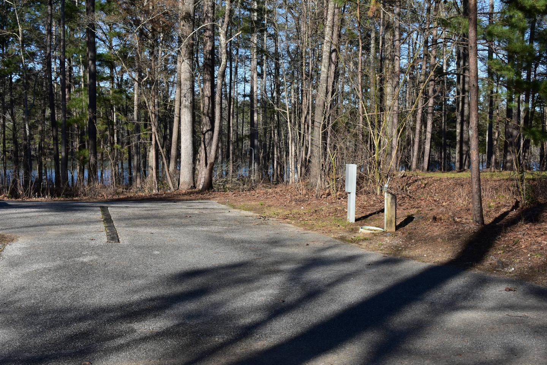 Fox Loop Site 19-1Fox Loop Site 19, March 6, 2020