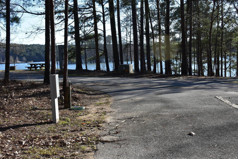 Fox Loop Site 19-3Fox Loop Site 19, March 6, 2020