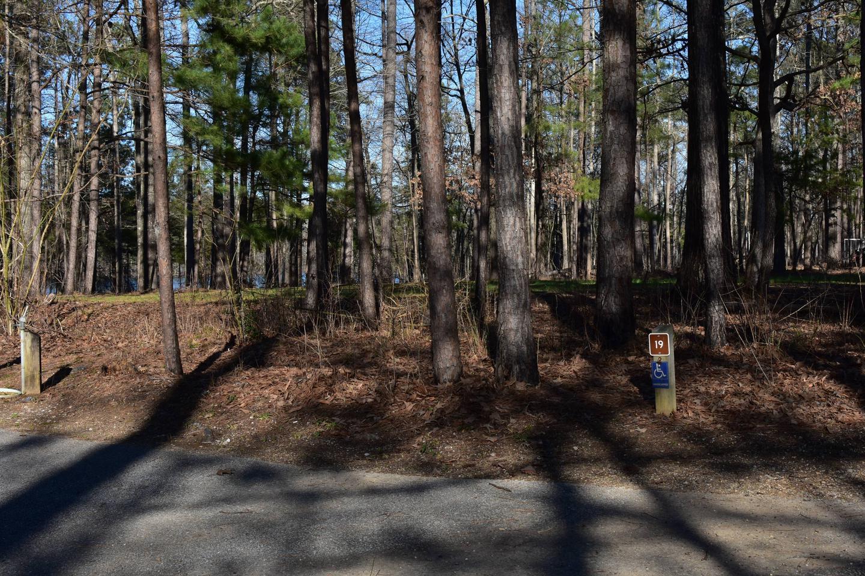 Fox Loop Site 19-2Fox Loop Site 19, March 6, 2020
