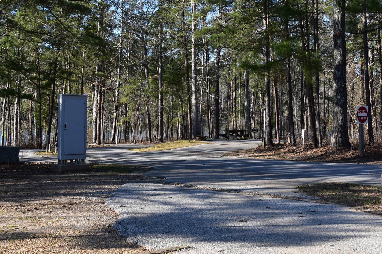 Fox Loop Site 20-3Fox Loop Site 20, March 6, 2020