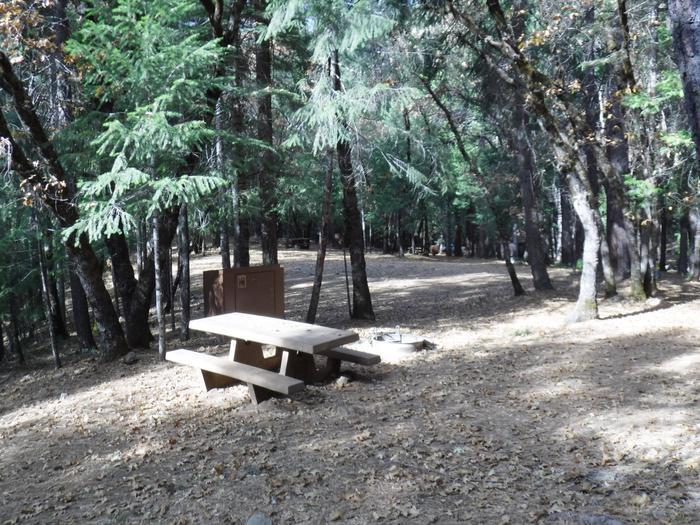 Campsite 13
