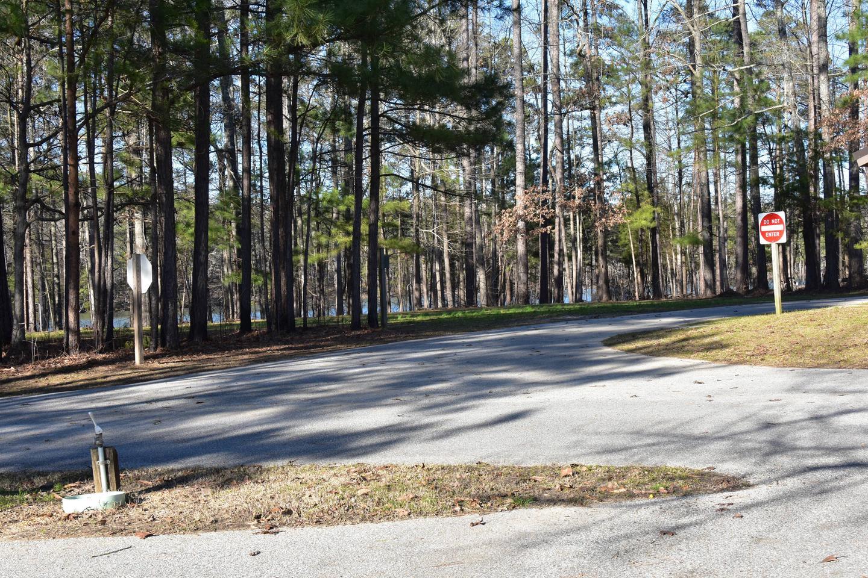 Fox Loop Site 20-5Fox Loop Site 20, March 6, 2020