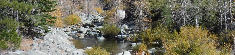 North Yuba River