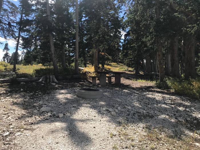 12 Mile Flat Campground  Site 212 Mile Flat Campground Site 2