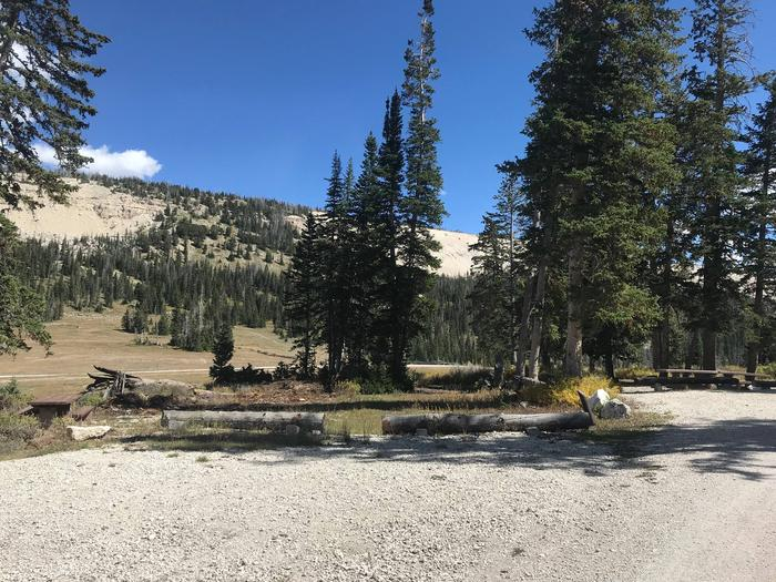 12 Mile Flat Campground Site #3