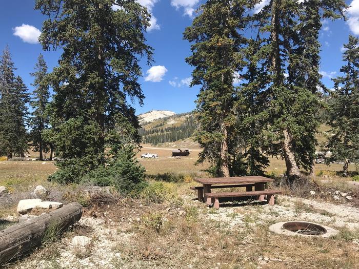 12 Mile Flat Campground Site  #312 Mile Flat Campground Site #3