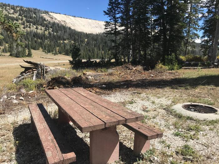 12 Mile Flat Campground Site # 312 Mile Flat Campground Site #3