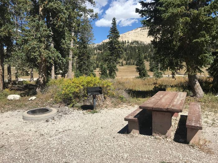 12 Mile Flat Campground Site  #512 Mile Flat Campground Site #5