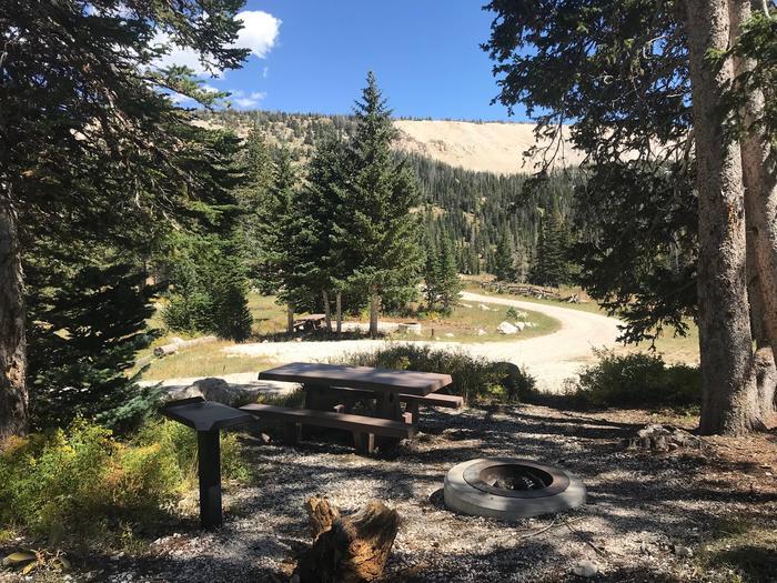 12 Mile Flat Campground Site  #712 Mile Flat Campground Site #7