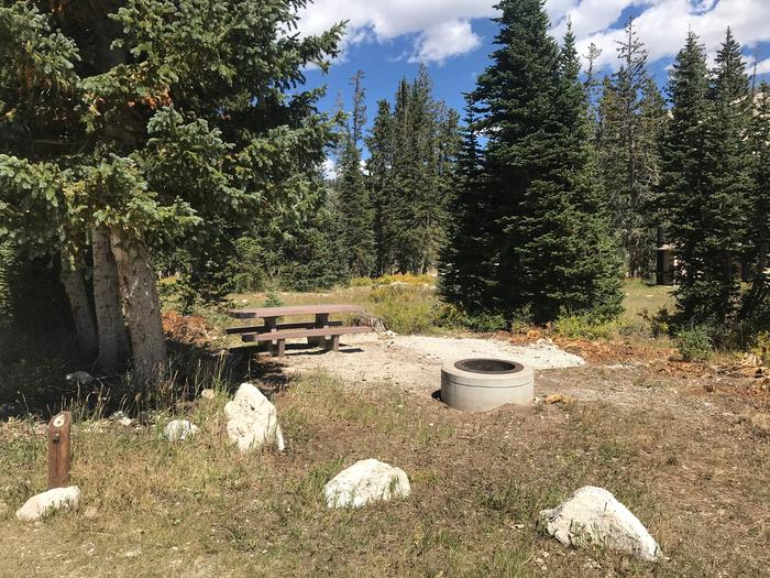 12 Mile Flat Campground Site  #612 Mile Flat Campground Site #6