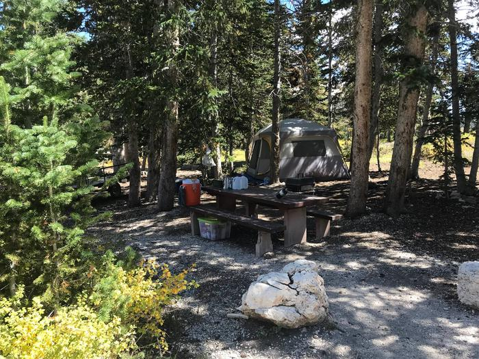 12 Mile Flat Campground Site  #912 Mile Flat Campground Site #9