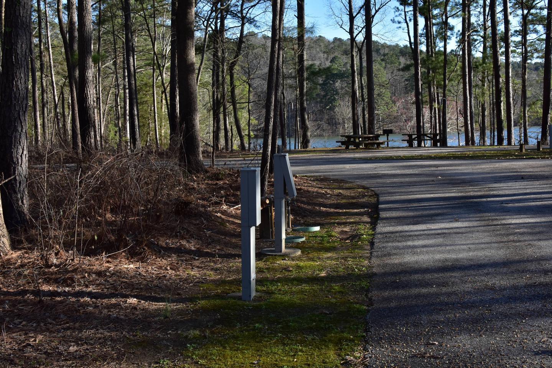 Fox Loop Site 23-3Fox Loop Site 23, March 6, 2020