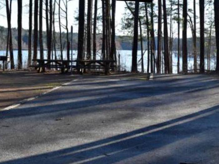 Fox Loop Site 26Fox Loop Site 26, March 6, 2020