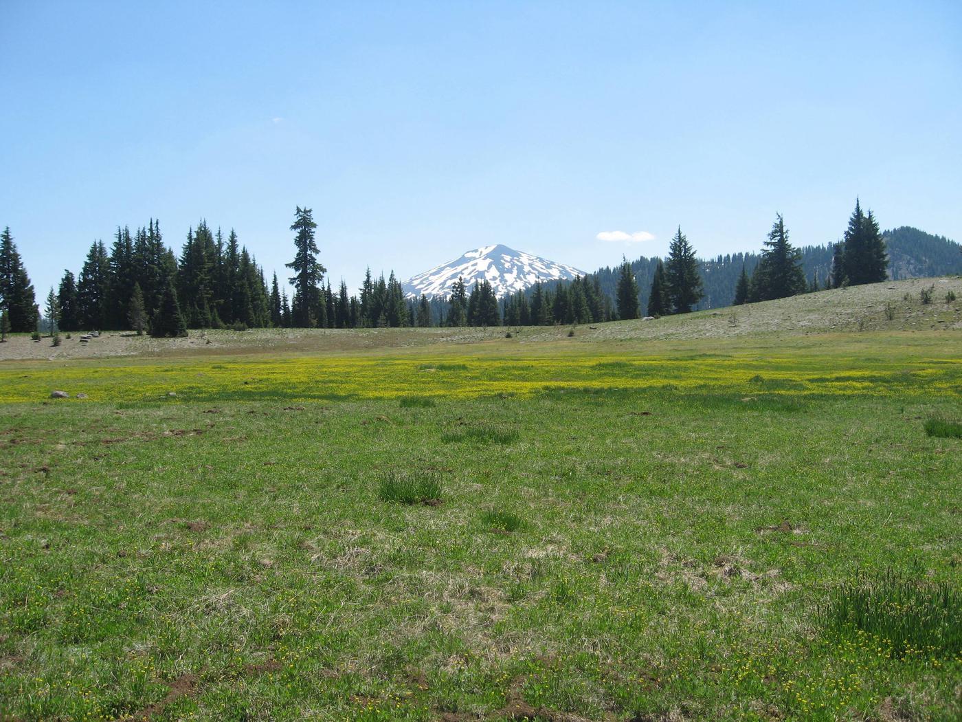 Todd Trail, Todd Lake, Three Sisters Wilderness, Soda Creek, Crater DitchTodd Lake