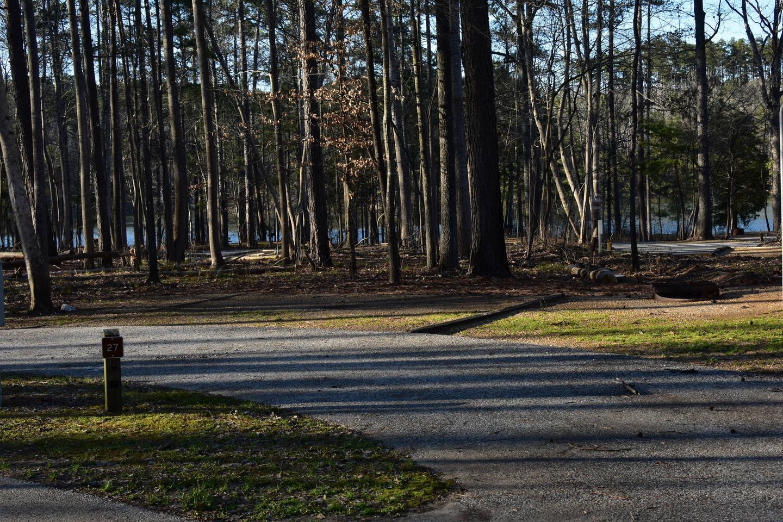 Fox Loop Site 26-1Fox Loop Site 26, March 6, 2020