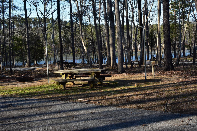 Fox Loop Site 26-2Fox Loop Site 26, March 6, 2020
