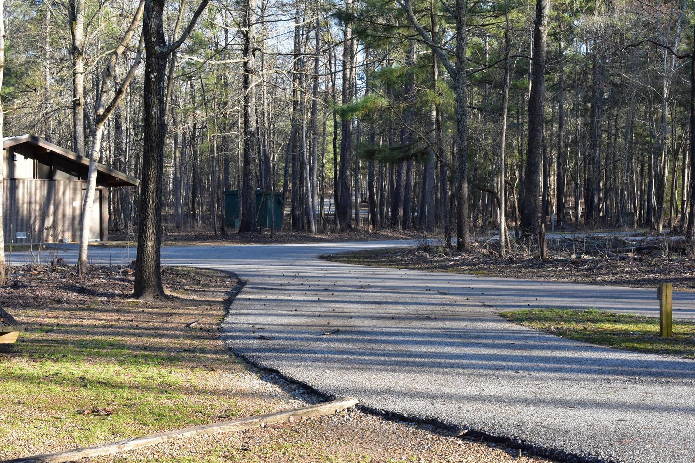 Fox Loop Site 26-3Fox Loop Site 26, March 6, 2020