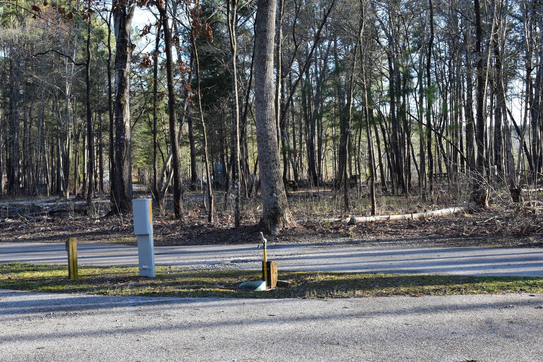 Fox Loop Site 26-4Fox Loop Site 26, March 6, 2020