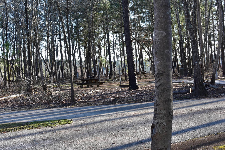 Fox Loop Site 26-5Fox Loop Site 26, March 6, 2020