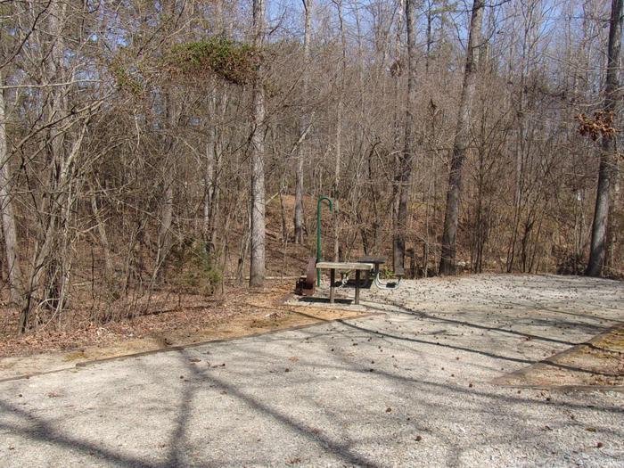 Rudds Creek 2Campsite #2